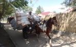 Paard en wagen – dag 168